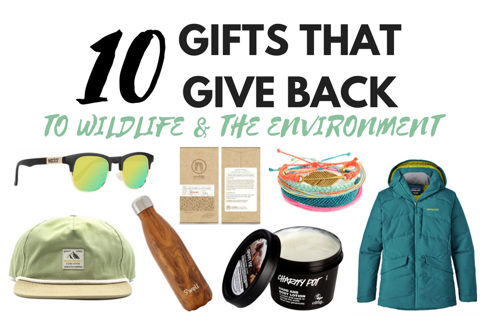 10 gifts that give back to wildlife and the environment