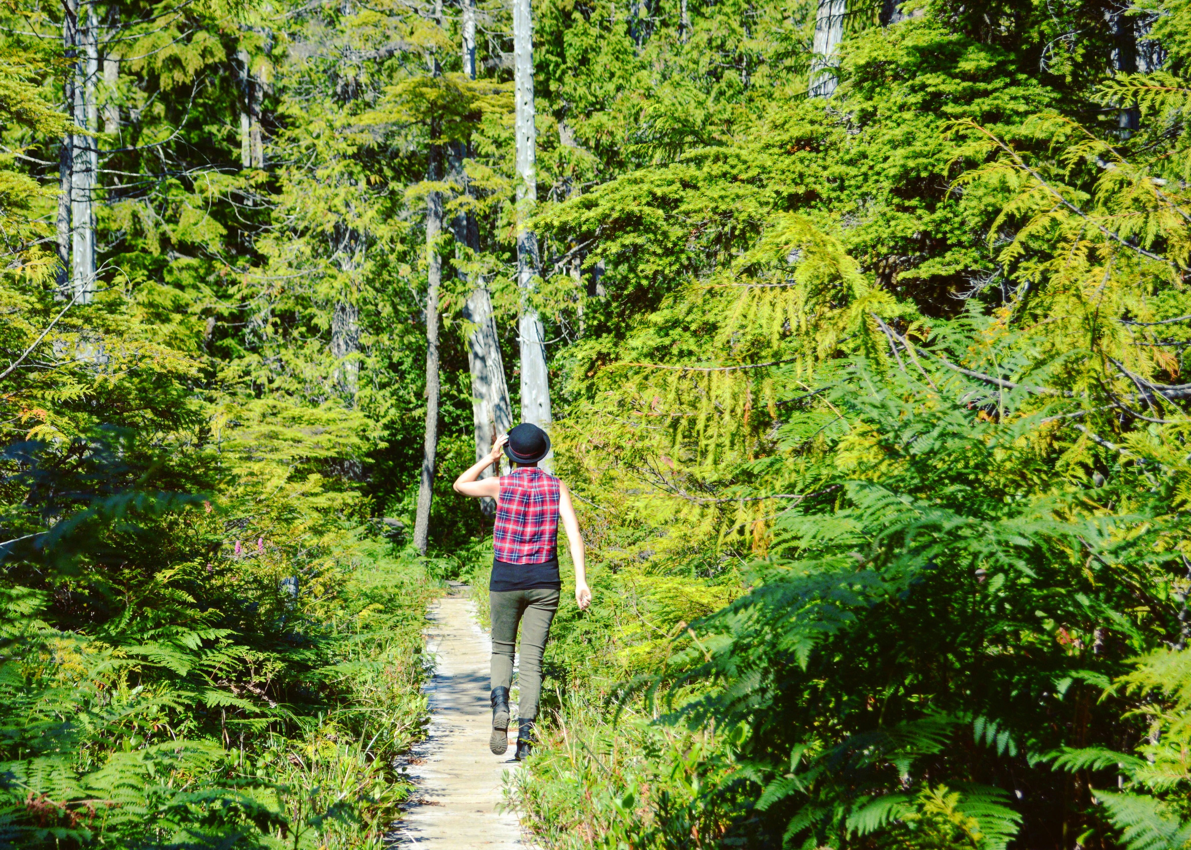 solo hiking olympic national park